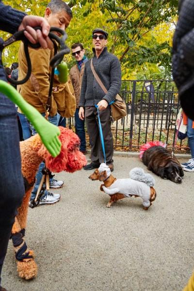 TSP_Dog_Parade_07
